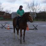 Encadrement Colonie Equitation : Mathilde, Monitrice et Responsable de la cavalerie, diplômée BPJEPS