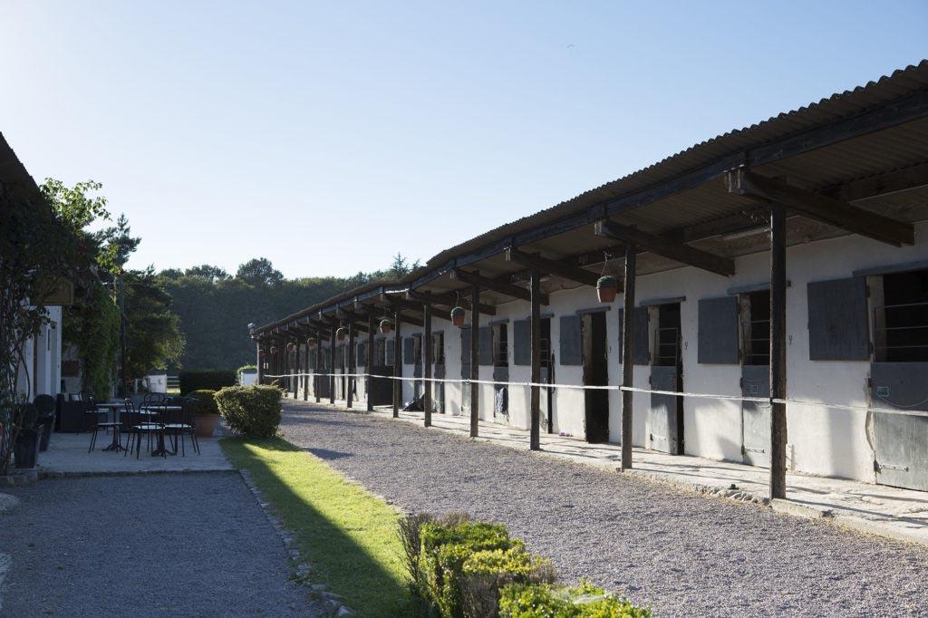 Colonie de vacances, stages équitation, en Bourgogne à Chevillon